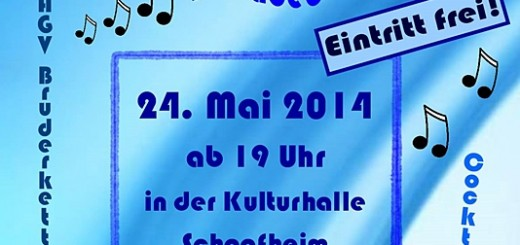 night-of-music-schaafheim2014